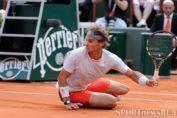 теннис Australian Open 2014