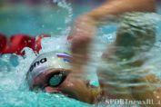 чемпионат европы по водным видам