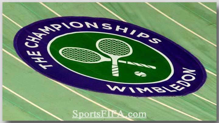 теннис уимблдон 2013