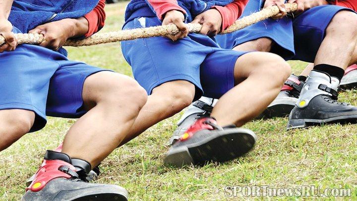 спорт день за днем